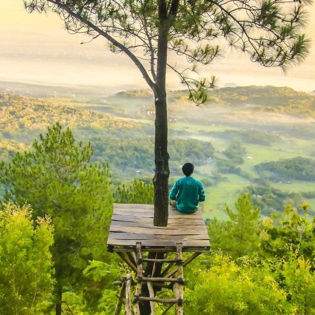 Homme-qui-médite-concentré-au dessus-arbre